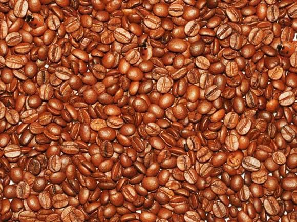 اوجد 3 وجوه اطفال في حبوب القهوة (مع الحل)